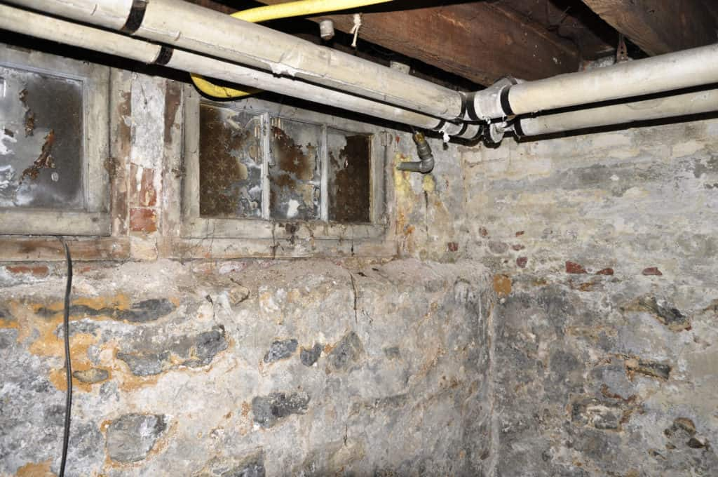 Is Mold Common In The Basement?