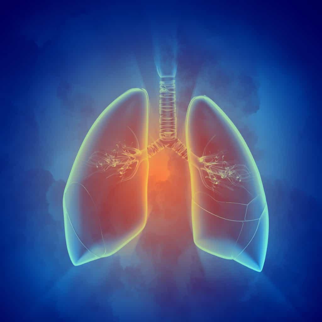 Diseases Caused By Indoor Air Pollutants
